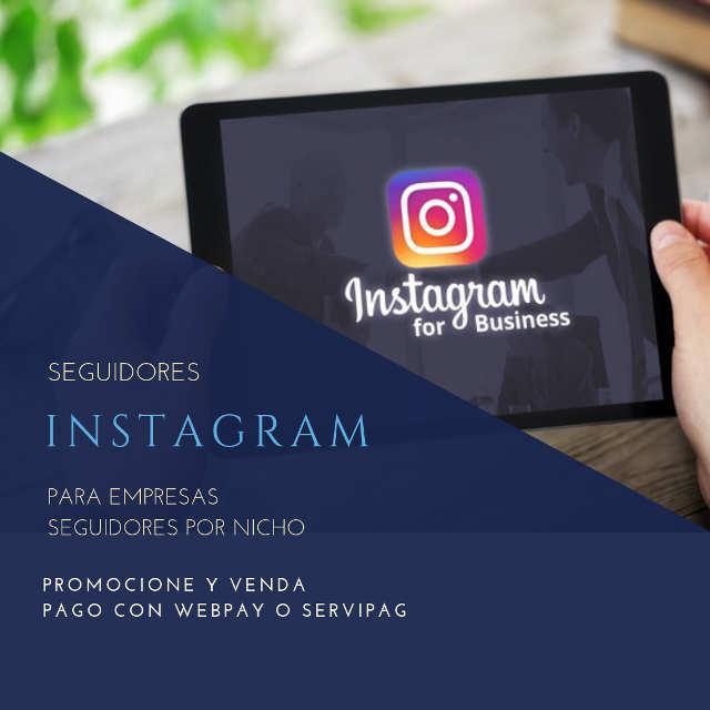 seguidores instagram para empresas